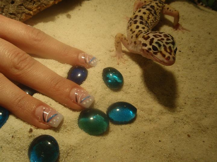 Gecko Nails Gecko